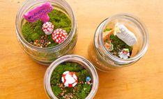 Make a fairy garden terrarium - I saw this on Frog Goose & Bear facebook page - so cute