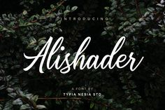 DLOLLEYS HELP: Alishader Free Font
