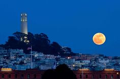 Coit Tower San Francisco, CA