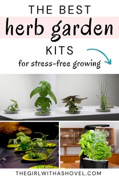 Here is a roundup of the EASIEST indoor herb garden kits out there! These are graded for ease of use and are all incredibly simple to use! These herb garden kits take out all the guess-work, leaving it so fool-proof, that even young children could grow their own indoor herbs! House Plants Decor, Plant Decor, Indoor Herbs, Indoor Plants, Herb Garden Kit, Herbs Indoors, Beautiful Space, Young Children, Houseplants