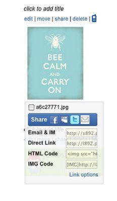 Blog Guidebook: How To Add Button Code & Code Box To Your Blog