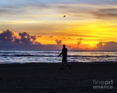 An exceptionally stunning sunrise/silhouetted person photograph- the colors in the sky are phenomenal- terrific to see that a seagull played a part in the scene, as well...!