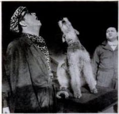 """Top Banana was a 1951 musical comedy w/ Phil Silvers, The show featured acts like a duet in which Silvers and an Airedale Terrier crooner named Ted (Sport) Morgan performed the showstopper, """"A Dog is a Man's Best Friend."""""""