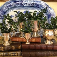 Seasonal boxwood clippings in antique silver trophy cups - Cary Goodrich