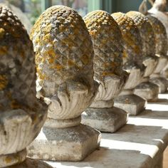 Love pineapples, stone or real.