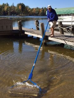 Return to product information Lake Dock, Lake Beach, Boat Dock, Docks Lake, Pond Weed, Lake Landscaping, Floating Dock, Lake Cabins, Lake Cottage