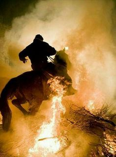 Horses ride through fire to mark Spanish festival of patron saint of animals Story Inspiration, Writing Inspiration, Character Inspiration, Fire Horse, The Witcher, Dragon Age, Legend Of Zelda, Storyboard, Photos
