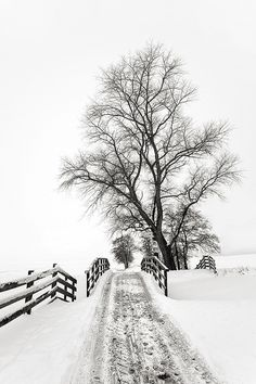 road to .... by hendrikus photography, via Flickr