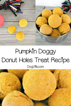 Skip the sugar-laden drive through freebie and whip up a batch of these pumpkin doggy donut holes hypoallergenic dog treats for your pooch! You will find interesting recipes for dog on my account. Dog Pumpkin, Pumpkin Dog Treats, Diy Dog Treats, Homemade Dog Treats, Dog Treat Recipes, Dog Food Recipes, Puppy Treats, Hypoallergenic Dog Treats, Dog Bakery