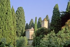 Between houses and old stone, Mongins. Indian summer on the French Riviera. Really secret hideout of many billionaires and other showbiz stars, Mougins is none the less a charming Provencal village with narrow, flowery streets of Grasse.