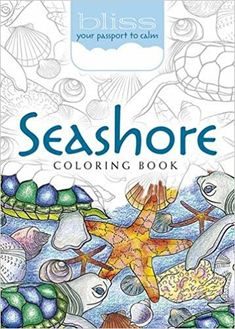 BLISS Seashore Coloring Book: Your Passport to Calm: Amazon.ca: Jessica Mazurkiewicz: Books