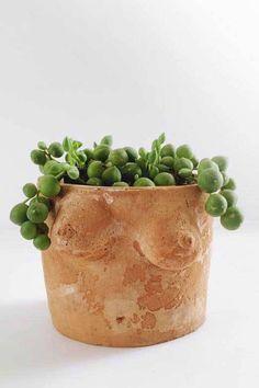 Large Terracotta Planters, Large Planters, Large Pots, Planter Pots, Cozy Apartment, Plant Nursery, Work Spaces, Living Area, Garden Ideas