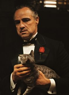 The Don's cat was a stray found by Francis Ford Coppola on a Paramount lot. Its purring muffled much of Marlon Brando's original dialogue.