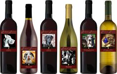 Forever Friends Great Dane Rescue was founded by a small group of people dedicated to the Great Dane breed. Our goal is to help neglected, abandoned, and abused Great Danes find their forever homes while educating the public about the breed and responsible pet ownership. We believe that every animal deserves a forever family to love them unconditionally for the rest of their lives.     Share A Bottle of Wine and Share Our Story... For more information, please visit www.foreverfriendsgdri.com