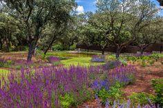 Fernando Martos . Landscape design by Fernando Martos Perez de Ayala, via Flickr