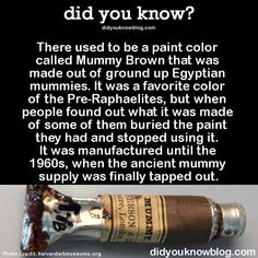 I Have Seen The Whole Of The Internet: Mummy Brown Paint