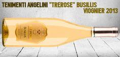 Spitzenweine von Tenimenti Angelini - http://weinblog.belvini.de/tenimenti-angelini-weine