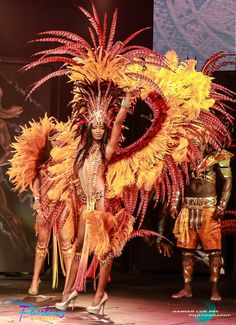 The Phoenix rises yet again from the ashes... Chad. Brazil CarnivalTrinidad ...  sc 1 st  Pinterest & 7 best Tonight weu0027re going International! images on Pinterest ...