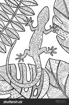 lizard tropical illustration for adult coloring
