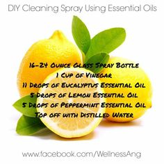lemon,eucalyptus-Try this blend for cleaning! Better then store bought brands that are filled with harmful chemicals. If you don't have these oils let Lemon Eucalyptus, Eucalyptus Essential Oil, Lemon Essential Oils, Cleaning Spray, Diy Cleaning Products, Glass Spray Bottle, Distilled Water, Doterra, Home Remedies