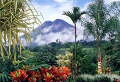 This view of Arenal and the surrounding tropical forest drives home the Jurassic Park-level of lushness of Costa Rican flora.