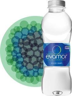 evamor water bottle