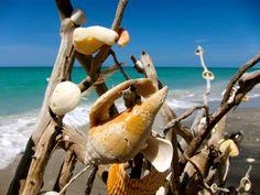 Stump Pass #Beach State Park in Englewood, #Florida #travel