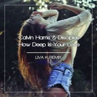 Calvin Harris & Disciples - How Deep Is Your Love (Liva K Remix)|  Free Download by Liva K on SoundCloud