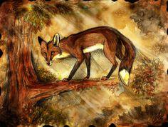 Лиса,лис, лисы, лиска,фэндомы,culpeo-fox,animal art,красивые картинки