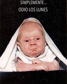 Y los martes ... miércoles ... #memes #chistes #chistesmalos #imagenesgraciosas…