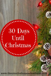30 Days Until Christmas - a plan for the holiday season!