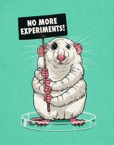 Want cruelty-free, vegan makeup? Try @orglamix #crueltyfreemakeup #orglamix