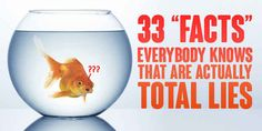 """33 """"Facts"""" Everybody Knows That Are Actually Total Lies"""