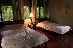 anhinga lodge rooms   - Costa Rica
