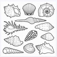 shell clip art black and white sea shell clipart shells clipart rh pinterest com Beach Shells Clip Art Conch Shell Drawing