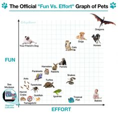 """The Official """"Fun vs. Effort"""" Graph of Pets"""