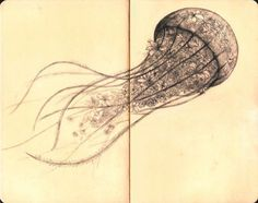 and we'll walk the city skies - I've seen more spine in jellyfish I've seen more...