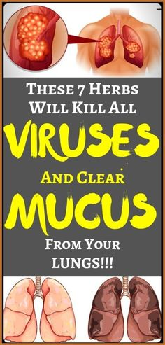 7 Herbs That Kill Viruses And Clear Mucus From Your Lungs Healthy Style, Healthy Tips, Healthy Habits, Herbal Remedies, Natural Remedies, Eczema Remedies, Health Remedies, Health And Beauty, Health And Wellness