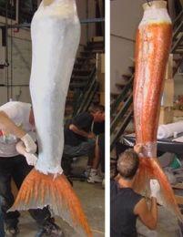 Making a latex mermaid tail Real Life Mermaids, H2o Mermaids, Mermaids And Mermen, Mermaid Tails For Kids, Mermaid Under The Sea, Siren Mermaid, Mermaid Diy, Mermaid Stories, Silicone Mermaid Tails