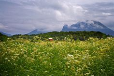 Red Shelter (landskap Romsdal) by Krogen, via Flickr