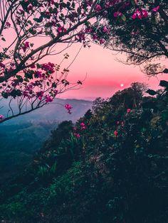 Sunset - Nature