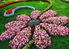 Garden Art with your flowers. Garden Art with your flowers. The post Garden Art with your flowers. appeared first on Garden Easy. Garden Art, Flower Bed Designs, Floral Garden, Plants, Beautiful Flowers Garden, Flower Garden Design, Flower Beds, Garden Layout, Beautiful Gardens