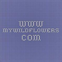 www.mywildflowers.com Identify Wildflowers