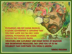 """""""Psychedelics are not illegal because a loving gov't is concerned that you may… Terence Mckenna, Information Processing, Sense Of Life, First Story, Rise Above, The More You Know, Sacred Geometry, Phonics, Psychedelic"""