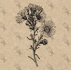 Daisy Flower Vintage image Instant Download Digital printable clipart graphic  fabric transfer decoupage burlap iron on etc HQ 300dpi by UnoPrint on Etsy #hq #png #bw #Ephemera #diy #old #book #illustration #gravure #inspiration #retro #antique #vintage #300dpi #craft #draw #drawing  #black #white #printable #crafts #transfer #decor #hand #digital #collage #scrapbooking #quality