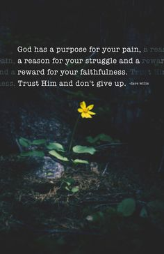 God has a purpose for your pain, a reason for your struggle, and a reward for your faithfulness. Trust Him & don't give up.