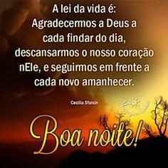 Good Afternoon, Good Morning, Good Night, Photos Of Good Night, Fluffy Animals, Buen Dia, Amor, Nighty Night, Bonjour