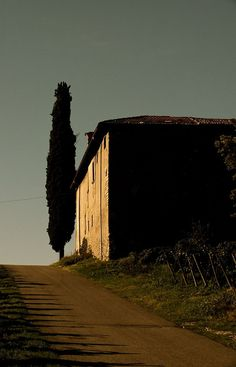 TIMOLINE_FRANCIACORTA  ©essequ allrights reserved by EsseQu_Freelance_Photographer, via Flickr