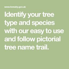 Identify your tree type and species with our easy to use and follow pictorial tree name trail.