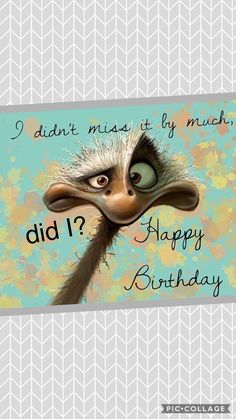 Aina Birthday Cards Yoga Lotus Flower April Birthstone Necklace with OM Symbol Belated happy birthday # Belated Happy Birthday Wishes, Happy Late Birthday, Birthday Blessings, Birthday Wishes Funny, Happy Birthday Messages, Happy Birthday Quotes, Happy Birthday Images, Funny Happy Birthdays, Happy Birthday Funny Humorous